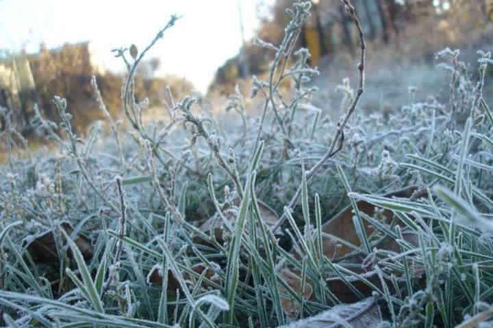 Погода на 20 січня: Україну накриє антициклон Ekart