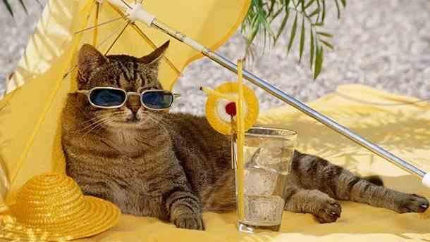 Погода на 11 травня: в Україні буде сонячно і спекотно, у деяких регіонах до +27