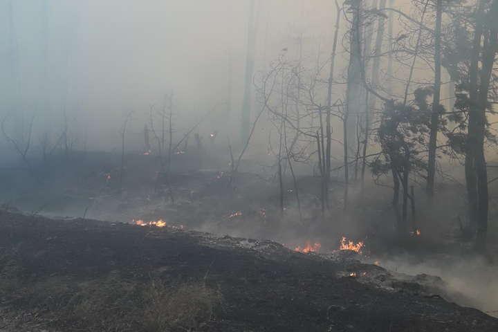 На Харківщині рятувальники гасять масштабну пожежу потягом і літаком