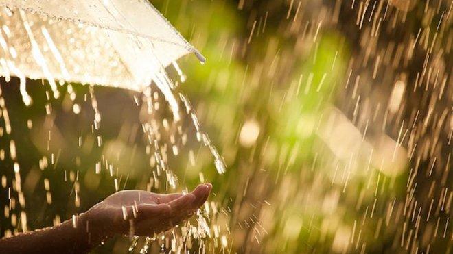 Прогноз погоди на 23 серпня: Західну Україну поливатимуть дощі, в інших регіонах – сонячно