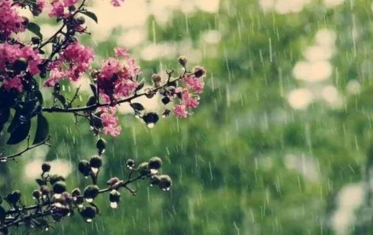 Погода на 31 травня: весна завершується дощами і грозами