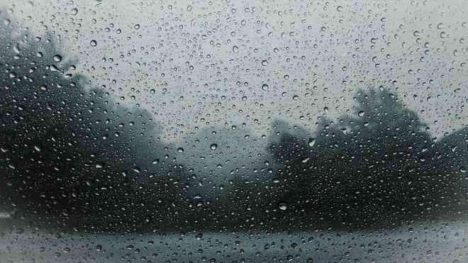 Погода на 24 червня: дощі не відступлять і литимуть майже в усіх областях