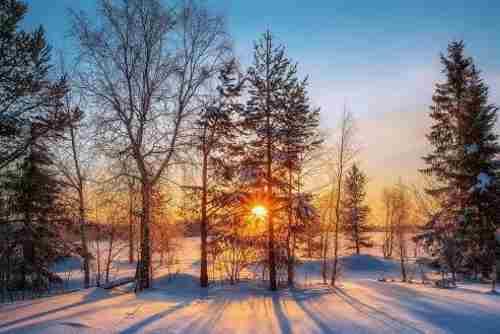 Погода на 7 лютого: в Україні буде сухо та сонячно