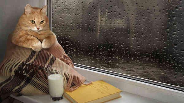 Погода на 3 червня: дощі не відступають, найхолодніше буде на Заході