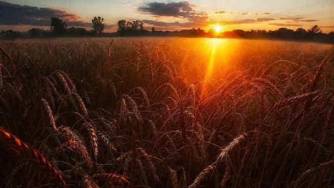 Погода на 27 серпня: осіння дощова прохолода та літня спека розділять Україну