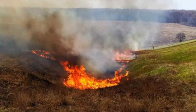 Пожежі на Харківщині: триває гасіння осередків у двох районах