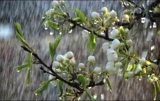 Погода на 3 травня: грози та дощі по всій території України, на Заході похолодає