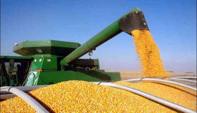 Україна тіснить США з китайського ринку кукурудзи