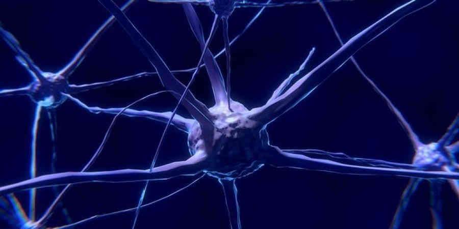 Думати шкідливо. Надмірна активність мозку скорочує життя — вчені