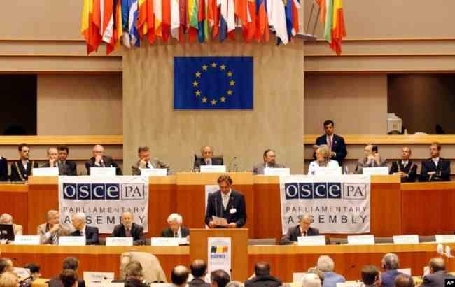 В ОБСЄ підтримали резолюцію про окупацію Росією частини Грузії