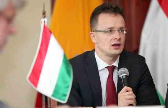 Мадярка паскудить!: Глава МЗС Угорщини у день виборів в Україні закликав підтримати одну з партій