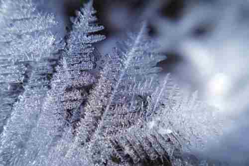 Погода на 25 січня: в Україні посилиться мороз, сніжитиме лише на Заході