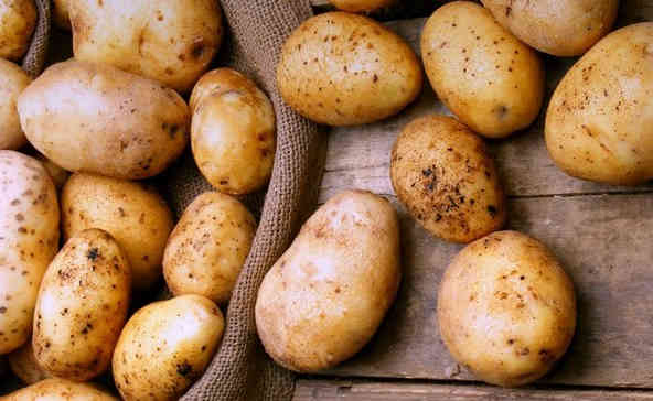 В Україні почала дешевшати картопля