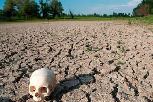 На обиженных воду НЕ возят... или влажные иллюзии крымского Гоблина