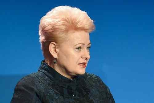 Наївна Даля: Президент Литви закликала Зеленського