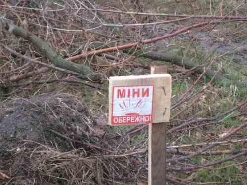 З початку агресії РФ на Донбасі від мін загинули 300 цивільних, 27 — діти